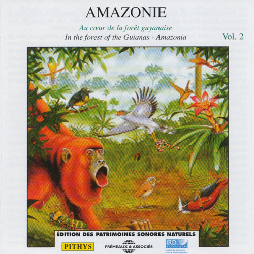 Amazonie Vol 2 : In The Forest Of The Guianas