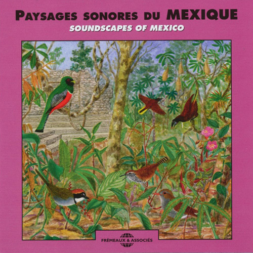 Paysages Sonores Du Mexique - Soundscapes Of Mexico
